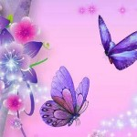 Kelebeğin Gücü...